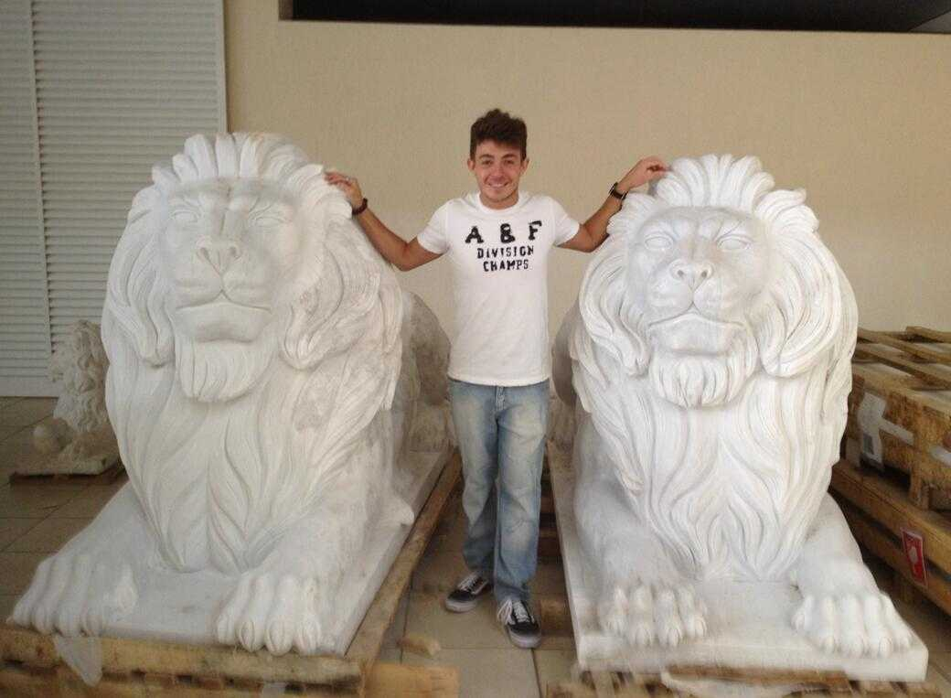 Marble Lion Statues for Brazilian Client